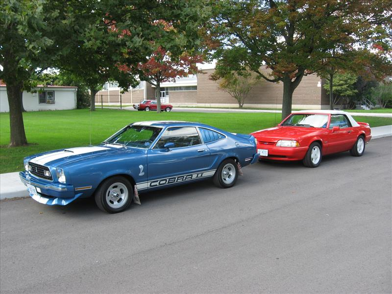 fall-cruise-cars-5_800x600