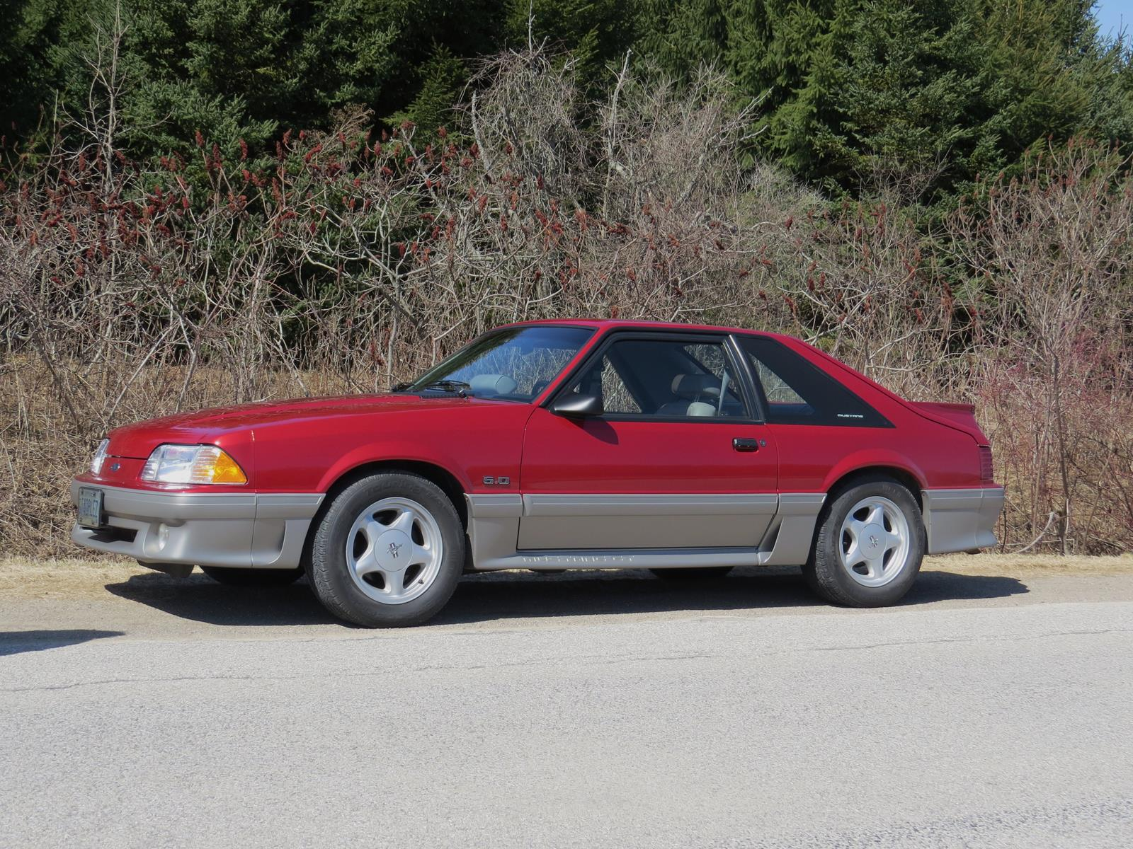 Chambers outing 1992 Mustang_1600x1200.JPG